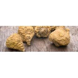 ICONFIT Maca Powder (250g)
